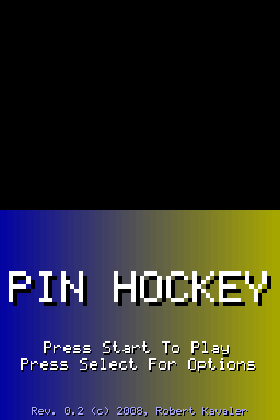 pinhockey.png