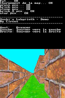 yoshislabyrinth2.png