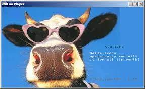 cowtips.jpg